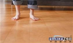 食品级的太尔胶,为何用在三层实木复合地板上?