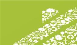 环保清查风暴持续发酵,硅藻泥行业迎来大机遇