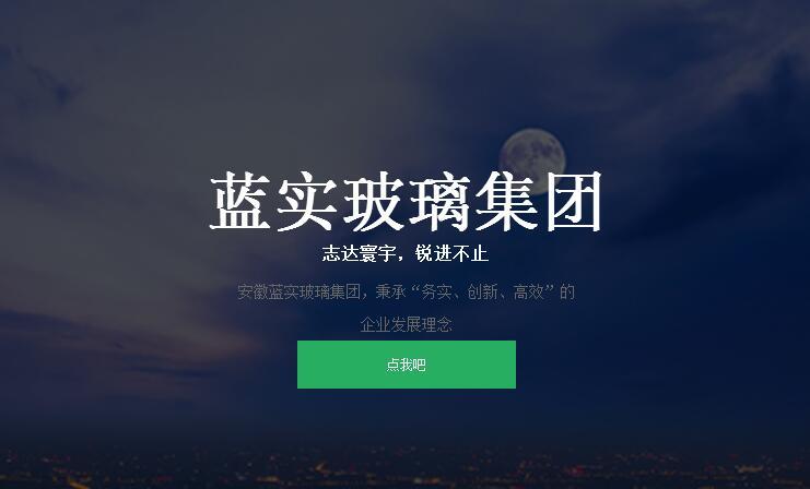 安徽蓝实集团