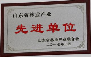山东省林业产业先进单位