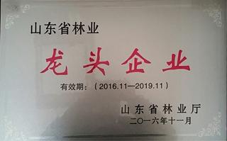 山东省林业龙头企业