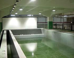 供应扬州化工车间环氧玻璃钢地坪施工