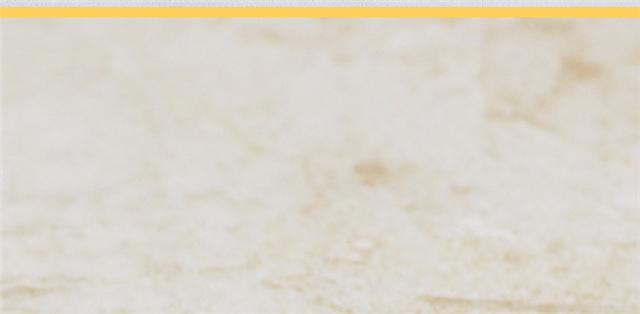 河北瓷砖厨卫内墙砖厨房专用釉面砖