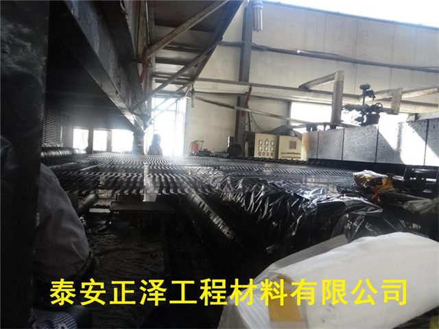 福建漳州 的钢塑土工格栅质优价廉现货供应