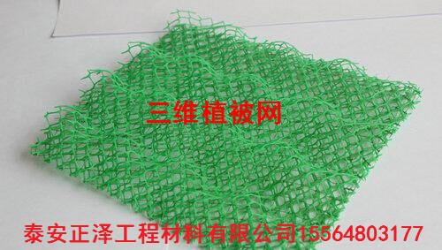 三维植被网四川石棉有生产厂家吗