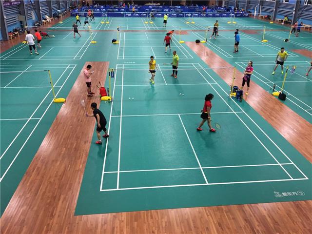 桦木体育地板 体育馆健身房专项使用防滑地板