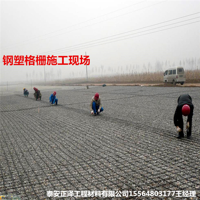 钢塑土工格栅厂家质量过硬客户纷纷回购