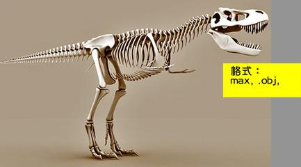恐龙骨架的是