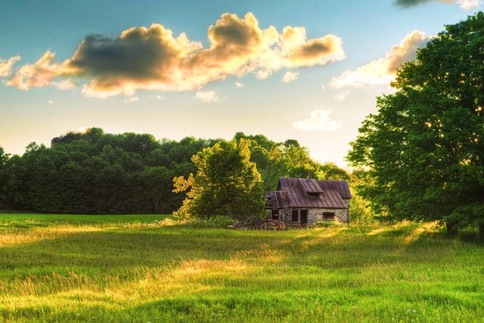 风景壁纸3d墙纸田园