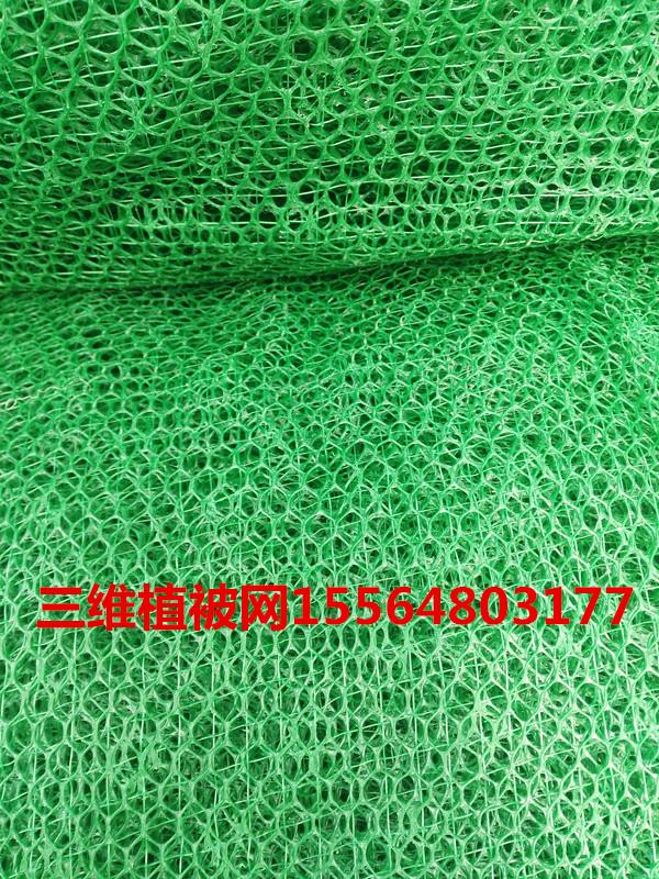 三维植被网多种规格常用于边坡防护