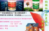 家装防水较专业的广东家装防水材料厂家