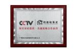 cctv合作伙伴