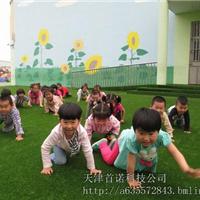 供应人造草坪 天津幼儿园草地免费施工
