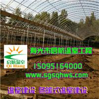 供应温室建设   简易连栋拱棚