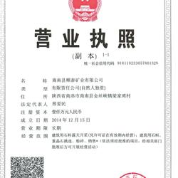 商南县顺泰矿业有限公司