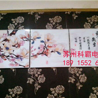 上海/浙江 冰晶画设备多少钱一台