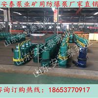 安徽WQ厂用排污泵价格 优质自吸排污泵型号