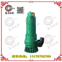 供应矿用潜水排沙电泵BQS40/20