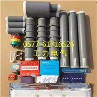 10KV��о�����ն�NLS-10/3.2(70-120mm?