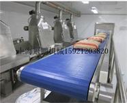 供应袋装链板输送机