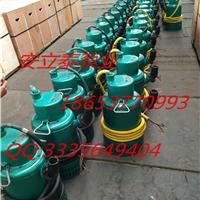 防爆潜污泵上市企业制造的质量没错