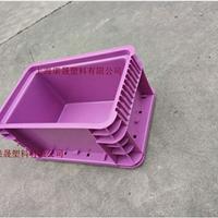 宁波SVW周转箱 塑料周转箱厂家低价直销渠晟