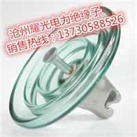 U70BLP耐污型钢化玻璃绝缘子