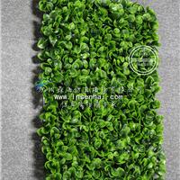 供应仿真植物墙草坪地毯绿植墙体假草皮