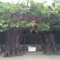 上海仿真树|水泥仿真树现场制作