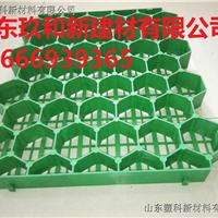 塑科草坪格_山东植草格生产厂家供应