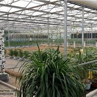 供应格润农业贵州花卉大棚纹络式智能型温室
