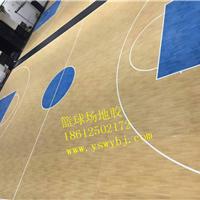 供应塑胶篮球场 室外塑胶篮球场
