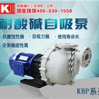KB-40014L国宝耐酸碱大头泵,抽取高效不堵塞