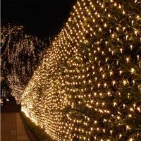 LED网灯,圣诞灯节日灯,灯串,门帘灯,