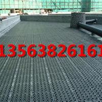 重庆2公分车库绿化排水板