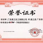 CCTV央视荣誉证书