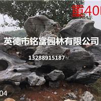 供应天然太湖石 大型太湖石 广东太湖石