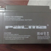 八马蓄电池PM100-12