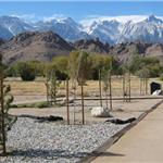 天然土透水路面―自然保护区