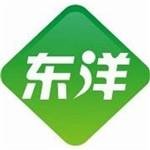 深圳市东洋电器有限公司