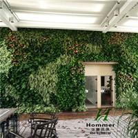 空间垂直绿化