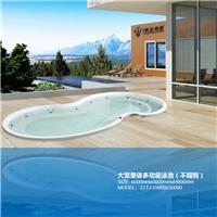 [6000x3000x900mm]大型整体泳池(不规则)