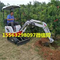 黑龙江伊春供应受热捧的小型挖掘机爆款