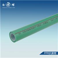 PPR抗菌管 PPR管十大品牌 白蝶PPR管批发