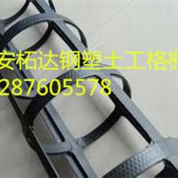 綦江县钢塑格栅销售厂家塑料格栅pet格栅