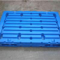供应大型塑料托盘专用吹塑机