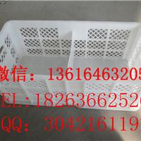 鸡蛋运输筐 种蛋塑料筐 鸡蛋筐生产厂家