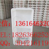 塑料种蛋筐 鸡蛋筐生产厂家 加大加厚鸡蛋筐