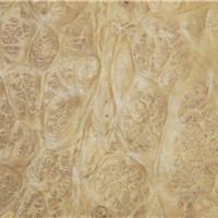 供应月桂树瘤染色木皮 - 东莞道奇木业厂