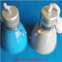 供应低价LED生鲜灯30w猪肉灯中山厂家